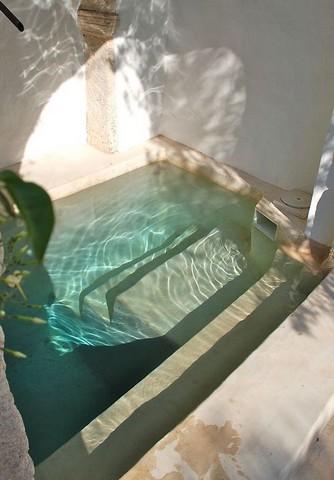 Piscines de r ve frenchimmo - Mini piscine interieure ...