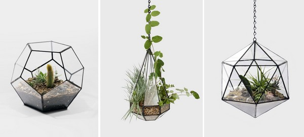 un terrarium de plantes design pour votre maison. Black Bedroom Furniture Sets. Home Design Ideas