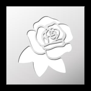 Fleurs/Plantes/Nature